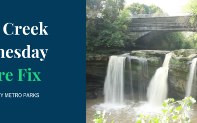West Creek Wednesday Nature Fix at Lorain County Metro Parks